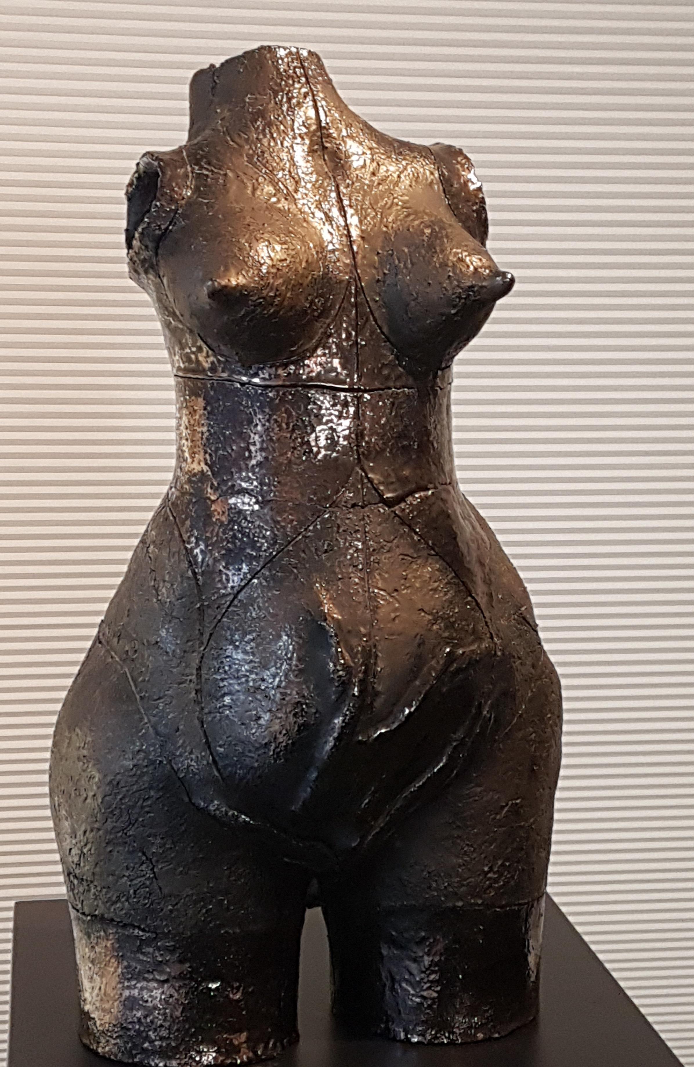 Vrouwelijk Torso