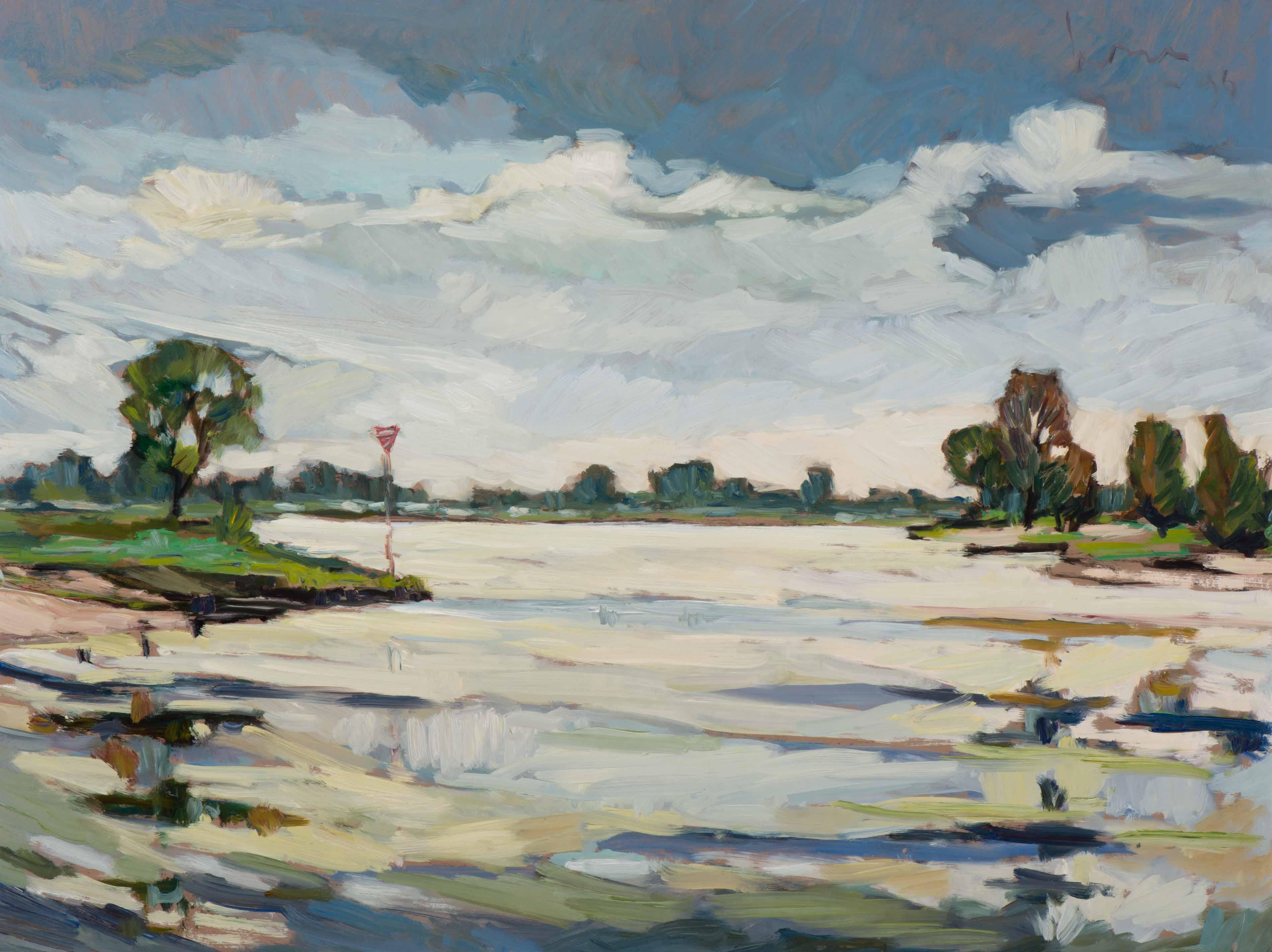 Schilderij van Kees Bol te koop gevraagd