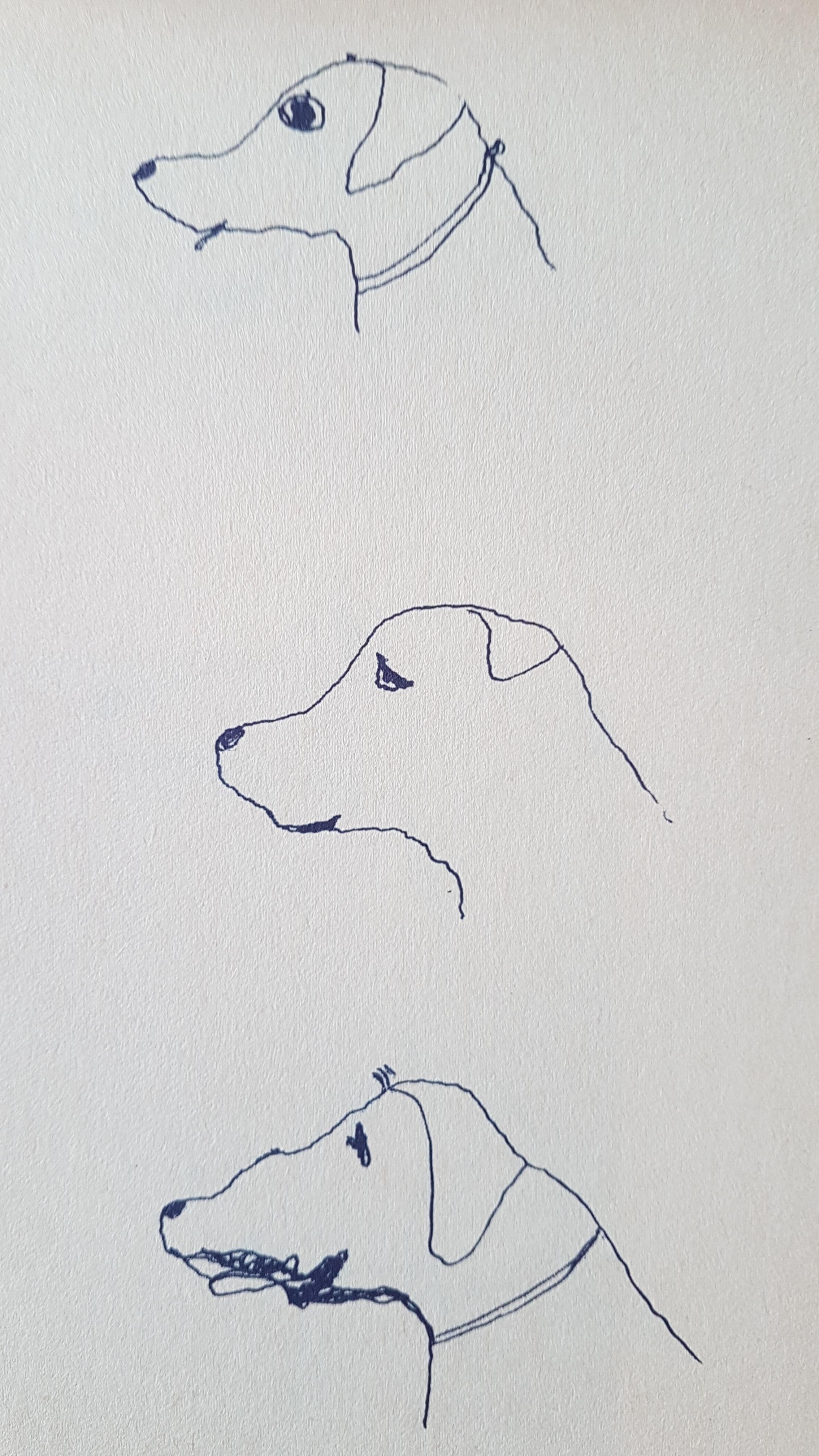 Boek in offset met 90 tekeningen van Holda uit 1974.