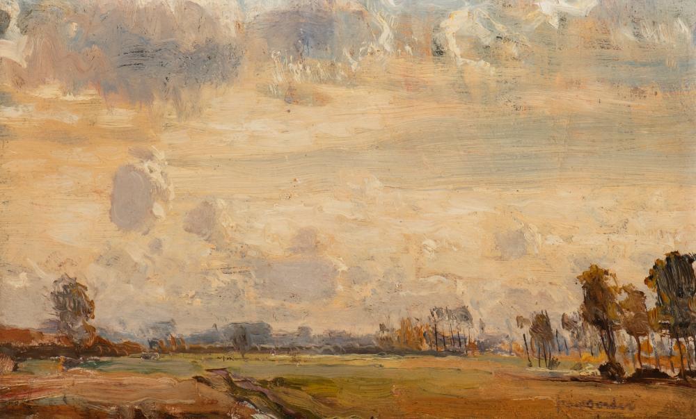Dutch landscape on a cloudy day