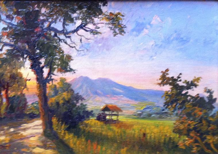 Sawah landschap
